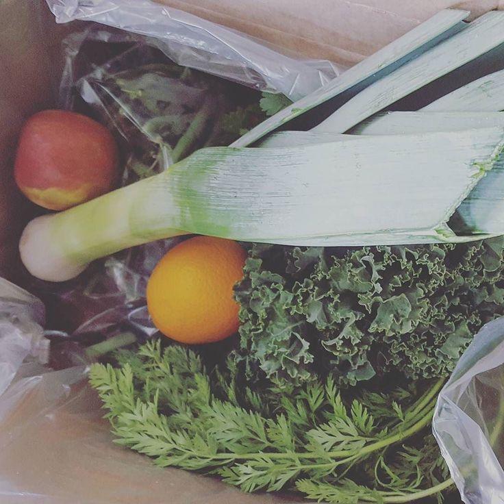 April 26. Farm fresh delivery follow my meals on @farmfreshcooking. 116/365 #marys365