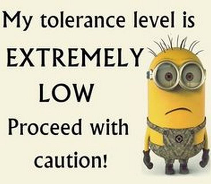 minion quotes www.minionsallday.com