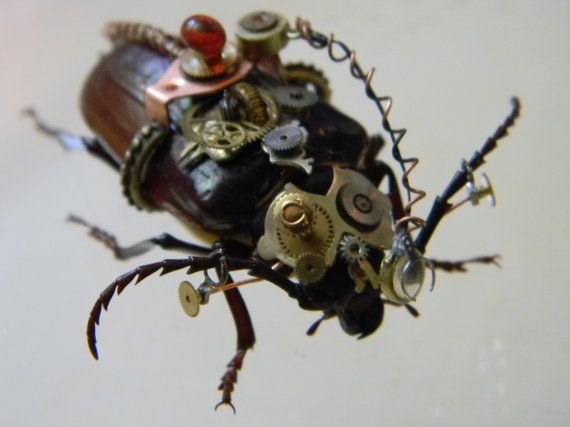 Stunning Steampunk Embellished Beetle and by CuriosityShopper, $269.00