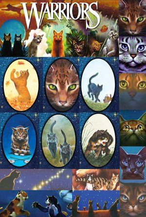 Cool selection of the book art. warriors erin hunter - Google Search