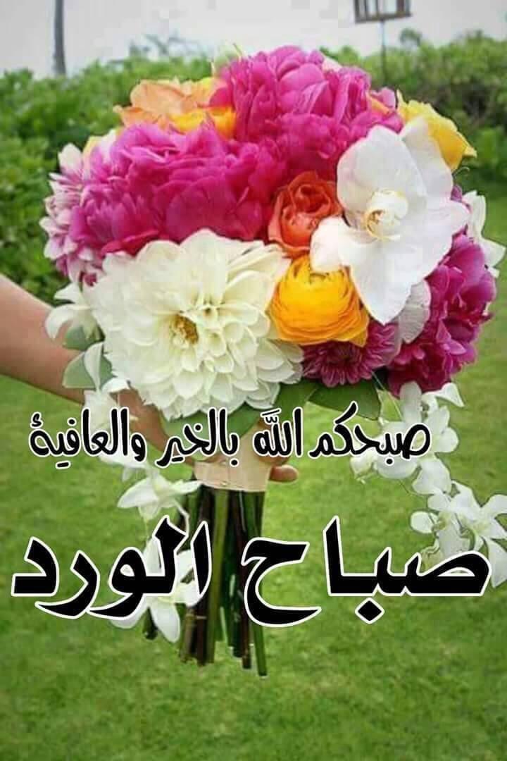 Pin By Layla Altemimy On تحيات Good Morning Arabic Morning Wish