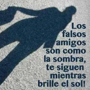 Los falsos amigos son como la sombra