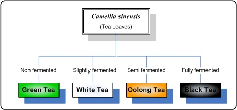 tea diagram