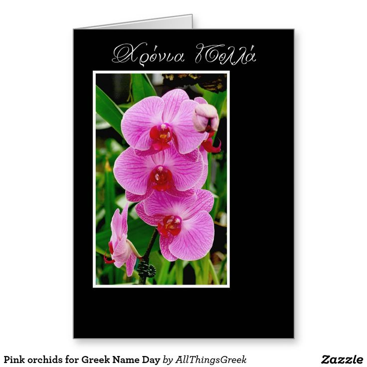 175 best all things greek images on pinterest grecian wedding pink orchids for greek name day card m4hsunfo Choice Image