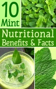 """10 Nutritional Benefits & Facts of Mint Leaves Another Pinner wrote, """"Awesome article. I love the cooling and soothing properties mint has on the body. I never knew it stopped farting either haha. That's a good benefit to know haha.""""  So true :)"""