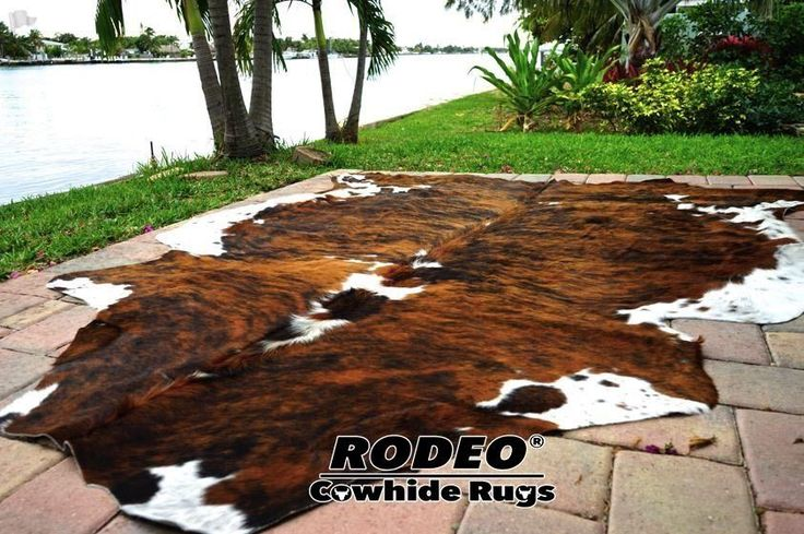 SUPERIOR   HAIR ON SKIN  cowhide RUG  BRINDLE size approx 6X7 feet #rodeo #Country