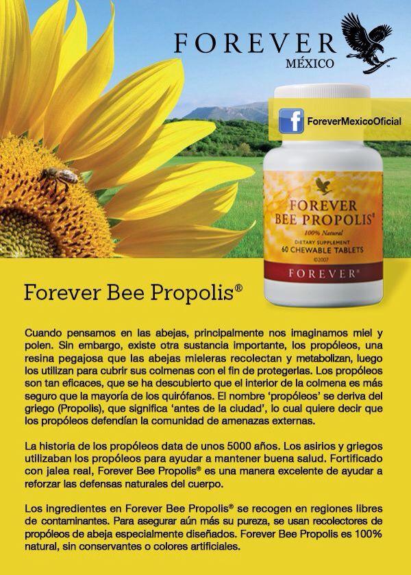 how to make bee propolis
