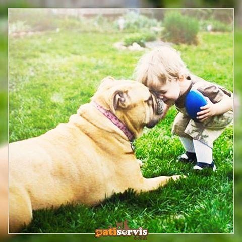 """İspanya'nın Trigueros del Valle şehrinde evcil kedi ve köpekler, hukuk önünde insanlarla eşit! Belediye Başkanı Pedro Pérez Espinosa: 1000 yıldır bu şehirde kedi ve köpeklerle birlikte yaşıyoruz. Bir şehrin başkanı sadece insanlarını değil, birlikte yaşadığı diğer canlıları da temsil etmelidir. Tüm hayvanların """"şey"""" değil de """"kim"""" olduğu bir dünya diliyoruz..."""