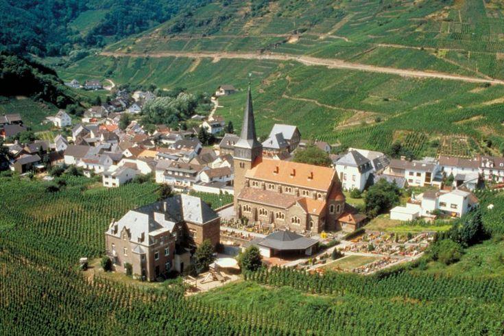 Saksan punaviiniparatiisin viinitarhat reunustavat Bonnin eteläpuolella Reiniin yhtyvän Ahr-joen laaksoa. Jyrkkien viinirinteiden täyttämät jylhät maisemat ulottuvat idän basalttikallion korkeuksista länteen Bad Neuenahr-Ahrweilerin tyylikkääseen kylpylään. Riesling on pääasiallinen valkoviinirypäle, mutta Ahrin pieni alue tunnetaan varsinkin hienoista punaviineistään, erityisesti Spätburgunderista (Pinot Noir) sekä sen varhain kypsyvästä sukulaisesta, harvinaisesta Frühburgunderista.
