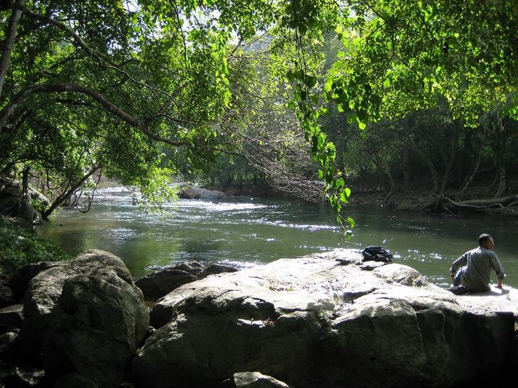 River Kunthi at Silent Valley