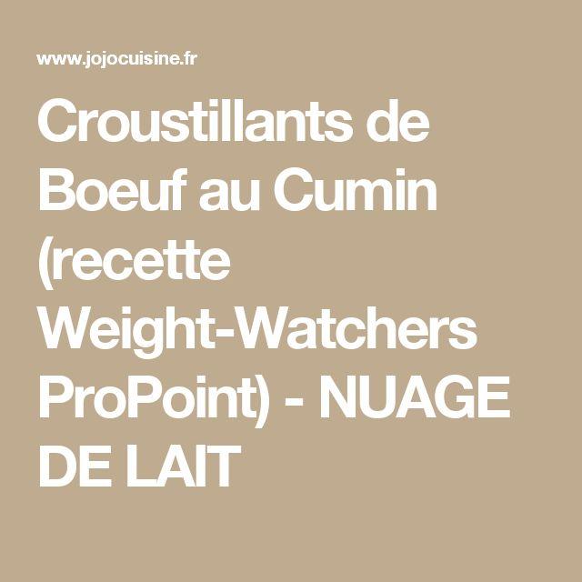 Croustillants de Boeuf au Cumin (recette Weight-Watchers ProPoint) - NUAGE DE LAIT