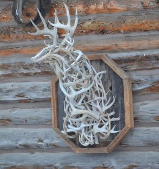 Antlers Something To Make With All My Hubby S Deer Sheds Things In 2018 Pinterest And Antler Crafts