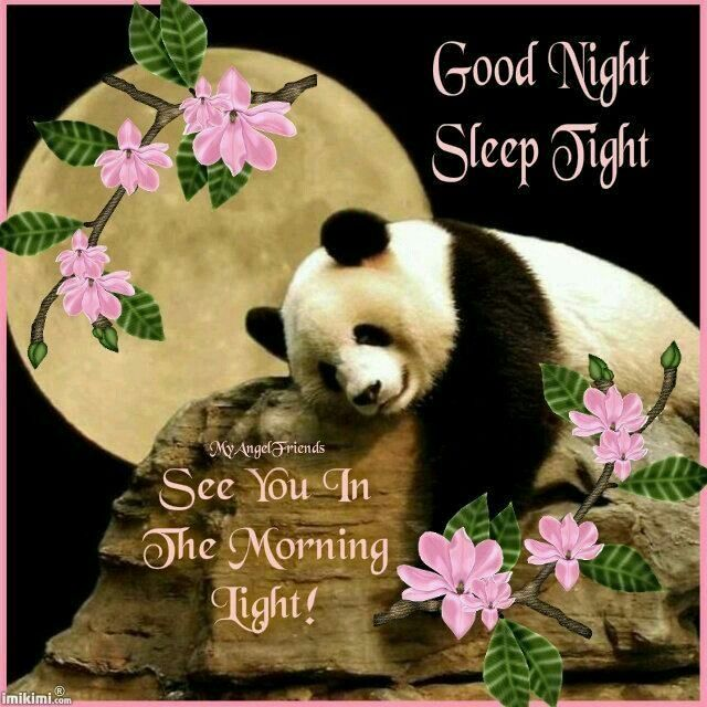 Good Morning And Goodnight In French : Good night dear sister and family sleep tight god bless