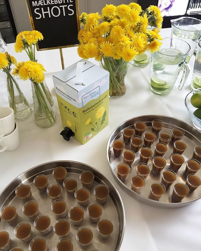 Today we're having our internal kick-off meeting for our SS17 products, at GOSH HQ! Here's to raw nature and beauty shots!  #GOSHCOPENHAGEN #KickOff #Dandelion #BeautyShots