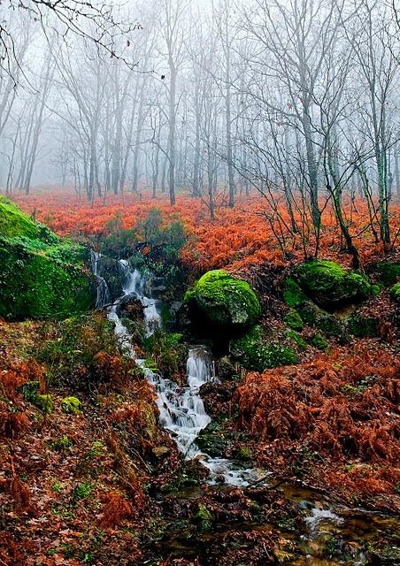 Otoño en el valle del Jerte, Extremadura