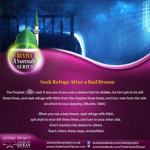 Seek Refuge After a Bad Dream