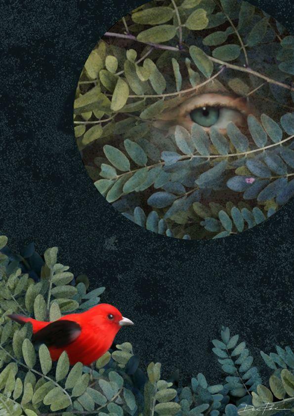 Daria Petrilli -Red point-