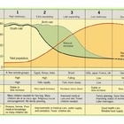 Demographic Transition Model - PowerPoint - What is the demographic transition model? A powerpoint explaining the phases and uses of the demographic transition model as well as its limitations.