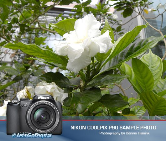Nikon P90 picture gallery