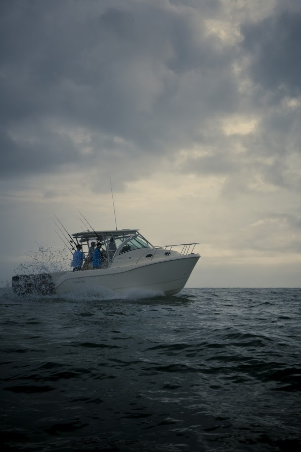 World Cat 290EC Express Cabin Power Catamaran - World Cat ...