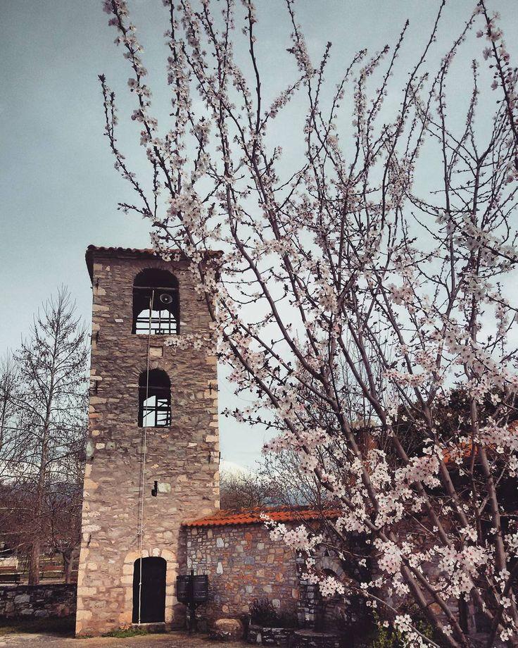 (@evaggelina) στο Instagram #village#spring#simplethings