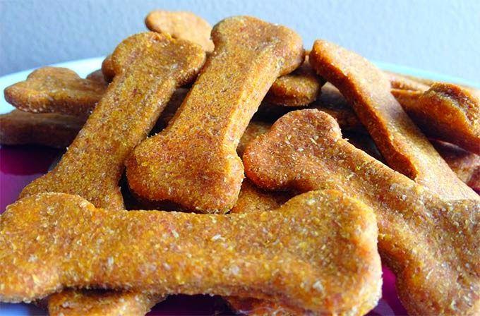 Cachorro pode comer isso?: Biscoito de abóbora