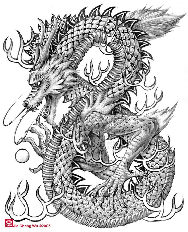 Chinese dragon drawings | Chinese Dragon by jiachengwu