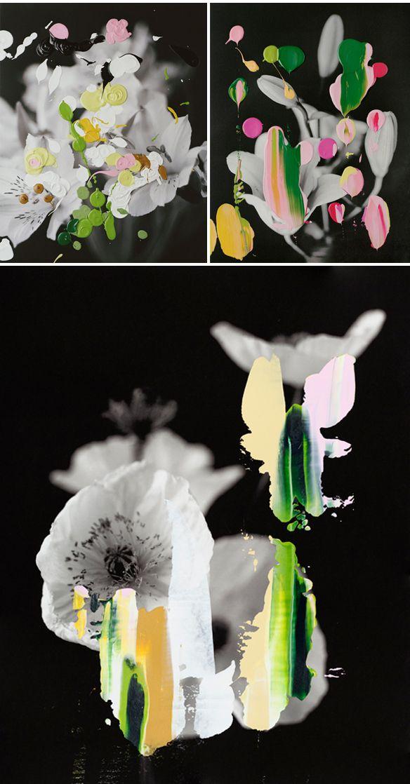 nanna hanninen - paint on photgraphy