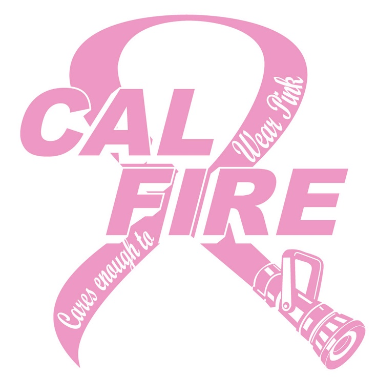 Cal Fire Cares Enough To Wear Pink Pink Ribbon Campaign