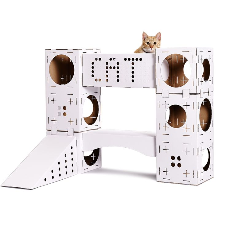 Unique playground for cats: Blocks from Poopy Cat