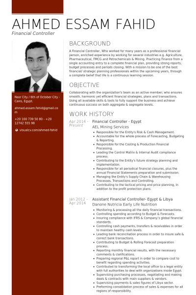 financial controller resume exle cv
