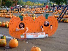 Spooner Farms Corn Maze in October