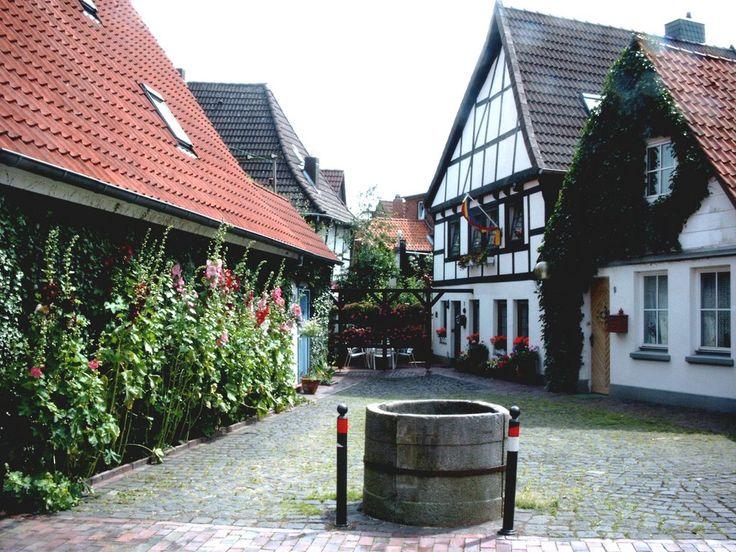 Nienburg/Weser : Stockrosen