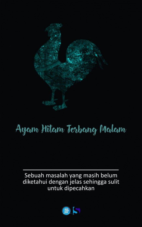 Ayam Hitam Terbang Malam
