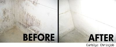 Remove mold with 3 parts vinegar to two parts water. Leave on an hour and wipe away. To prevent mold, spray any surface you want to remain mold-free. Source: DIY Life