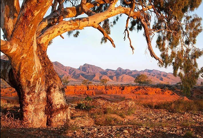 Up north in the Kimberleys - Western Australia