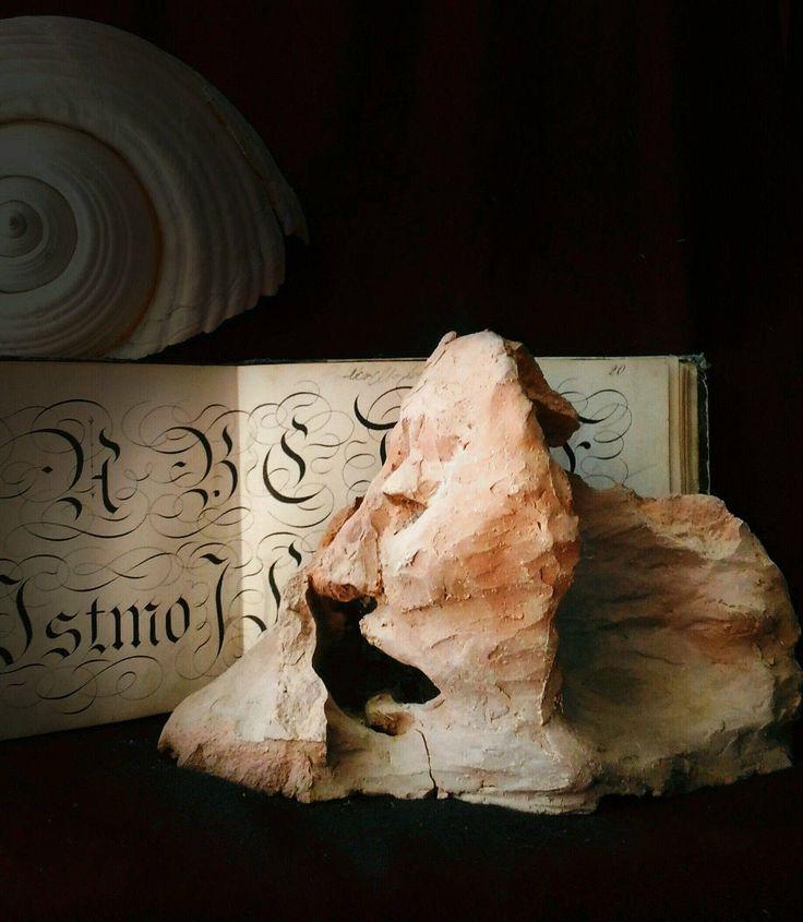 Ceramic paperweight sculpture oddities head occult goth gothic wunderkammer cabinet curiosite creepy strange odd art di studyartantique su Etsy