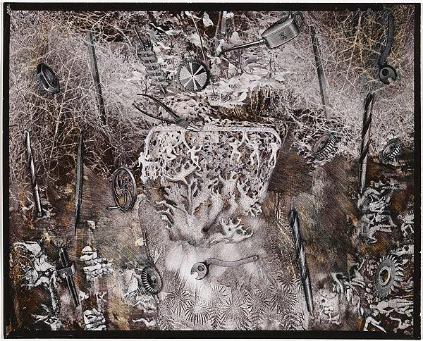Fiona HALL, Garden of Eden (Genesis Series)