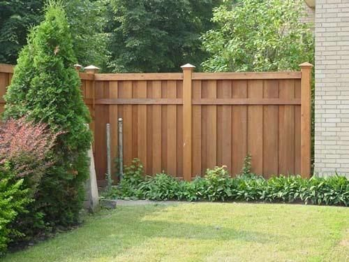 6 Ft Cedar Privacy Fence With Cap Front Yard Pinterest