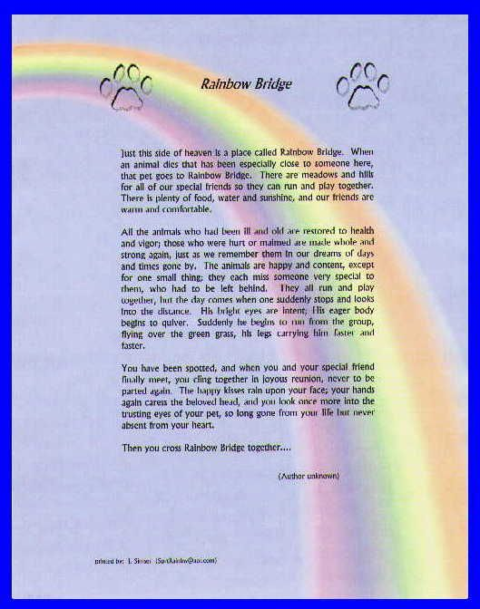 Universal image regarding rainbow bridge printable