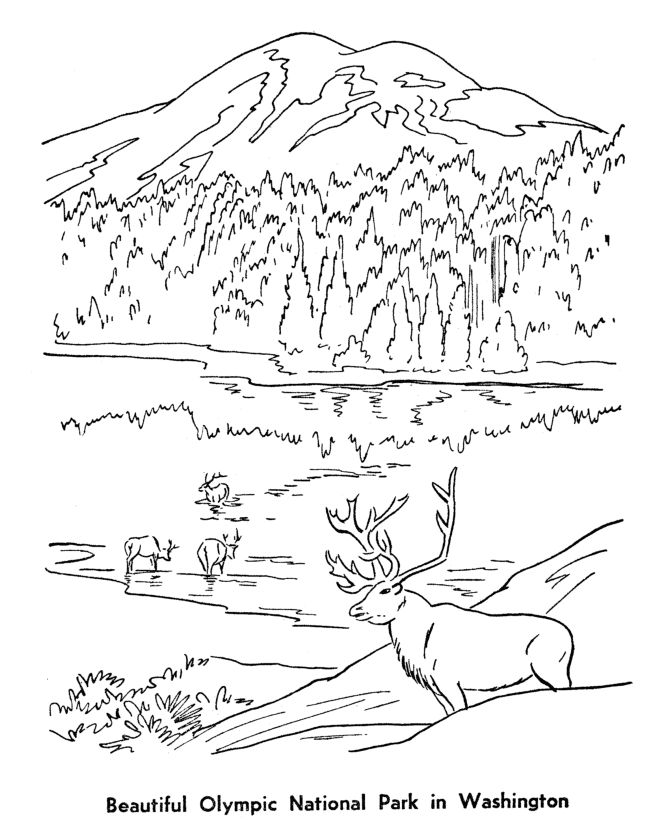 Olympic National Park Coloring Page Happy National Parks