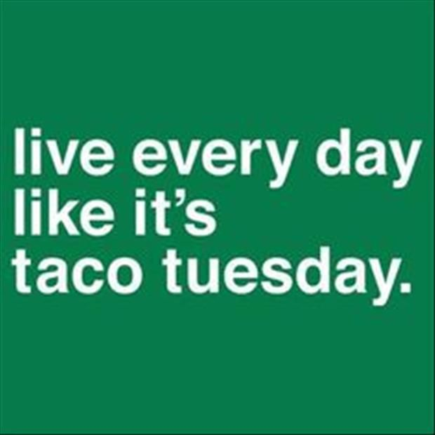 taco tuesday on valentines day meme - 17 Best ideas about Taco Tuesday Meme on Pinterest