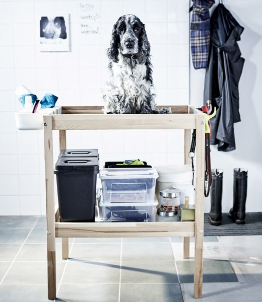 A dog sits on top of a changing table that has been hacked to store all of his accessories and grooming supplies.