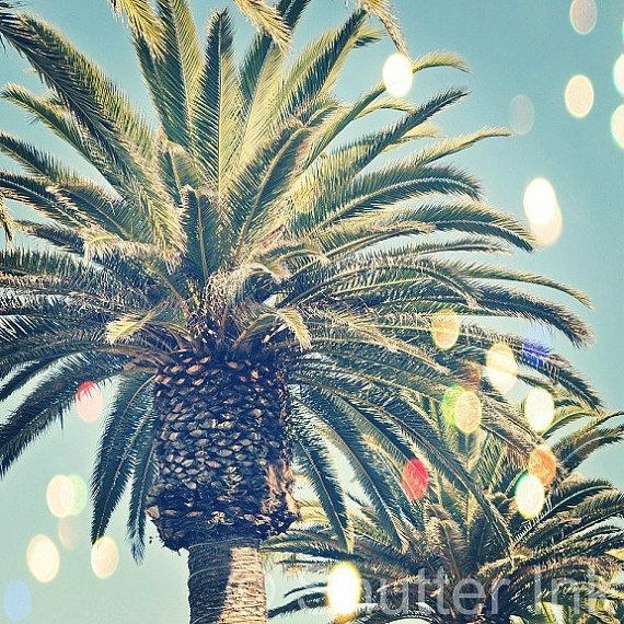 California Dreams - Palm Trees Beach Los Angeles Bokeh Wall Art Print - 5x5. $15.00, via Etsy.