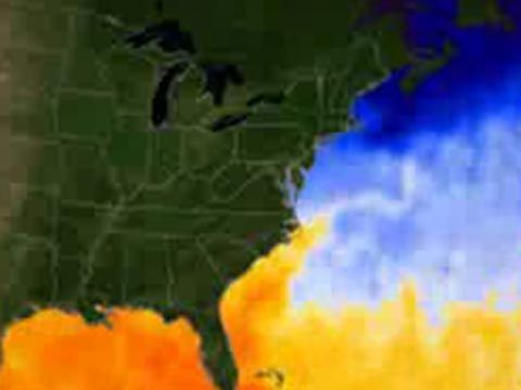 Warmer water temperatures spawned hurricane Dean. This animation shows temps climbing from January thru Thursday, Aug. 16. Areas of 80 degrees Fahrenheit or higher are depicted in yellow, orange, and red.