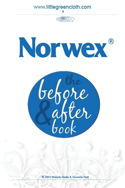Norwex Before and After Photos (I love my Norwex Enviro cloth and window cloth!)