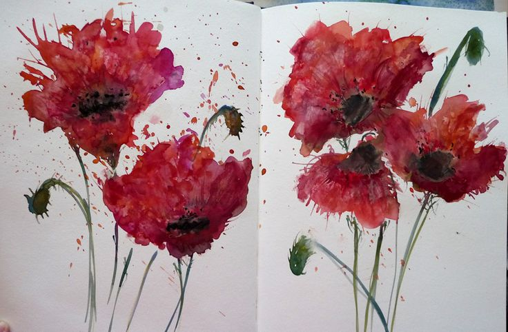 A finute minute poppy exercise in watercolour and watercolour pastels