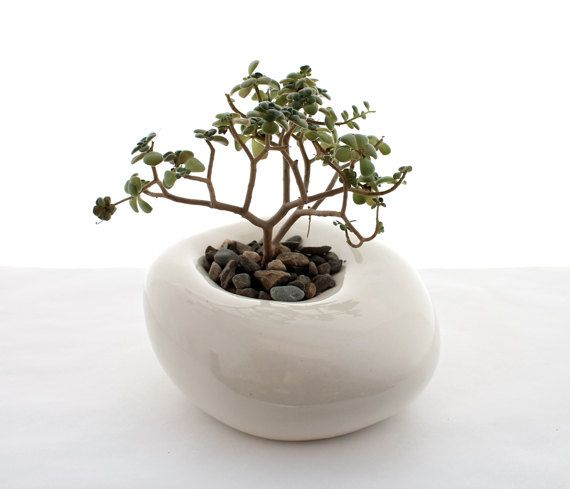 Small Sculptural Planter by LandMstudio on Etsy, $65.00