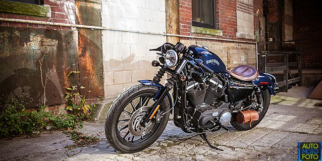 davidson black singles We stock harley-davidson touch up paint for all models and colors need help finding your harley-davidson paint code we've got you covered.
