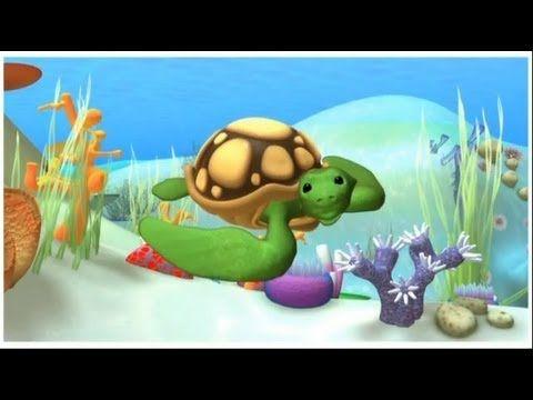 Alex - La Tortuga Marina - dibujos educativos sobre animales del mar